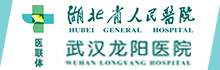 武汉龙阳医院有限公司