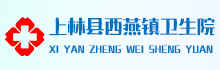 上林县西燕镇卫生院招聘信息