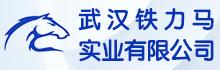 武汉铁力马实业有限公司